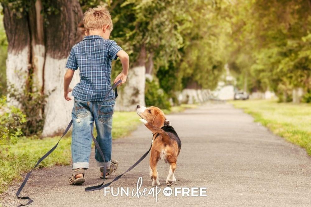 little boy walking dog, from Fun Cheap or Free