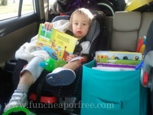 Survival tips for road tripping with young kids