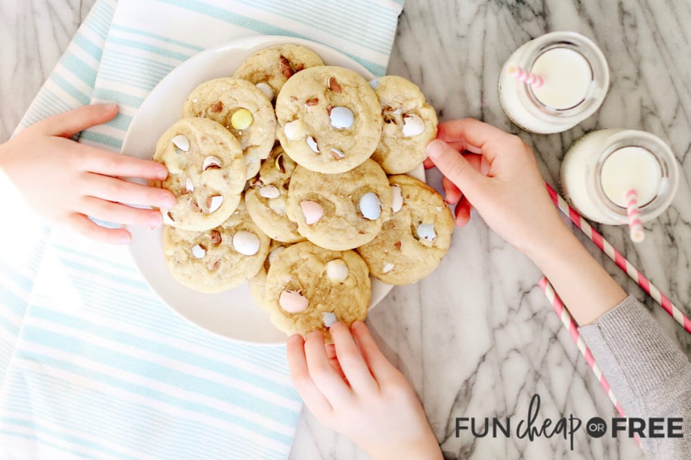 Delicious Chocolate Chip Cookie Recipe from Fun Cheap or Free
