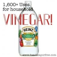1,600+ uses for VINEGAR! Plus…how to use vinegar to treat sunbur..