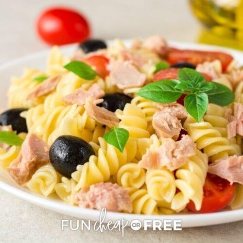Italian pasta salad with tuna, from Fun Cheap or Free