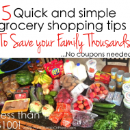 5 simple grocery shopping tips that will save you thousands! (literall..