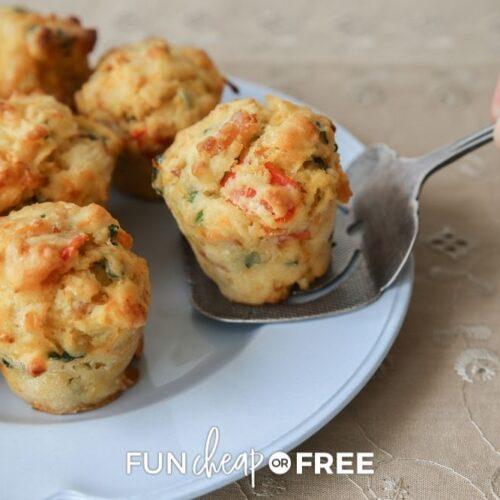 crustless mini quiche muffins, from Fun Cheap or Free