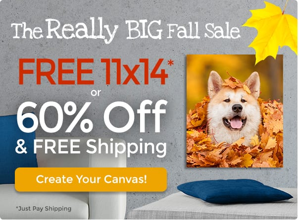 Free 11x14 canvas (or 60% off + free shipping)!