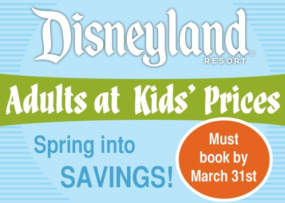 Discounted Disneyland Packages