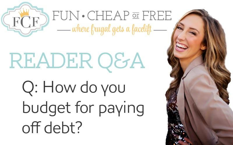 budget for debt