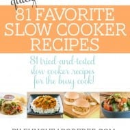 Slow Cooker Recipes EBook [Support My Goal to Visit YOU!]