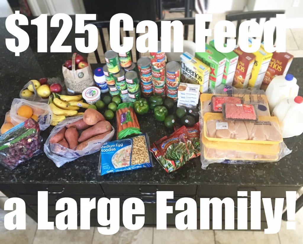 You CAN feed a family of 6 on $125 per week! See how at www.FunCheapOrFree.com