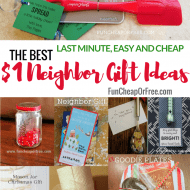 25 $1 Neighbor gift Ideas! (Cheap, Easy, Last-Minute!)