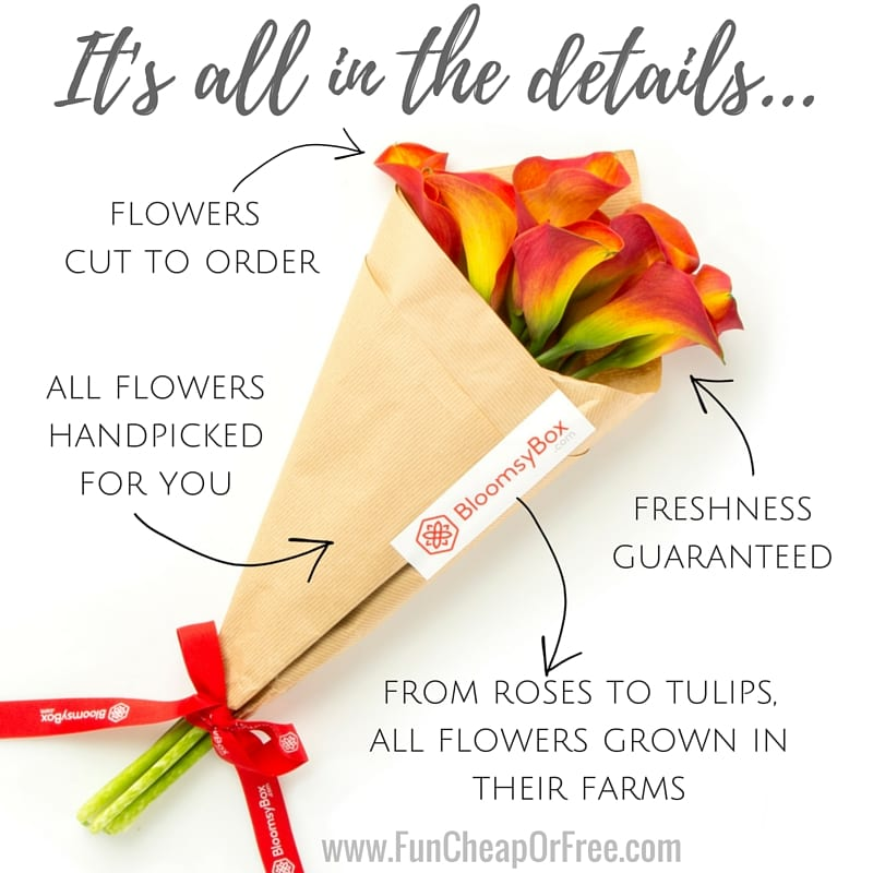 The perfect gift for the woman who has everything! BloomsyBox is the monthly floral delivery subscription that sends a gorgeous bouquet to your door every month! www.FunCheapOrFree.com