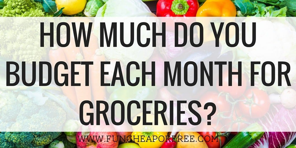 How much do you budget each month for groceries?