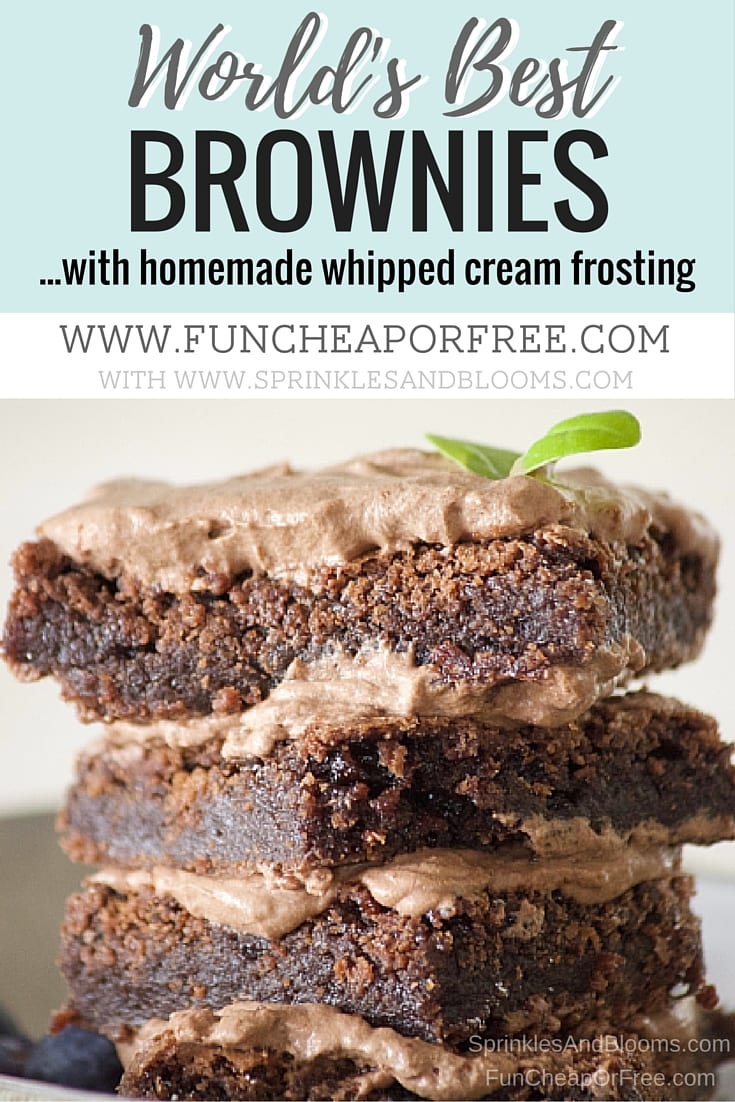World's best brownie recipe, right here! Chocolatey, chewy, thick, and frosted. The best dessert for your next party! www.FunCheapOrFree.com