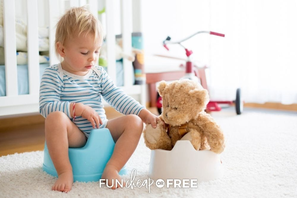 toddler boy potty training with teddy bear, from Fun Cheap or Free
