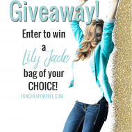 Lily Jade Giveaway! Win your bag of choice, up to $340 value!