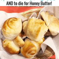The Best Homemade Roll Recipe plus to die for Honey Butter