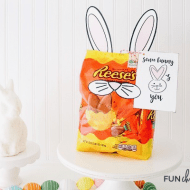 Some Bunny Loves You Easter Gift Idea with Reeses Eggs from FunCheaporFree.com