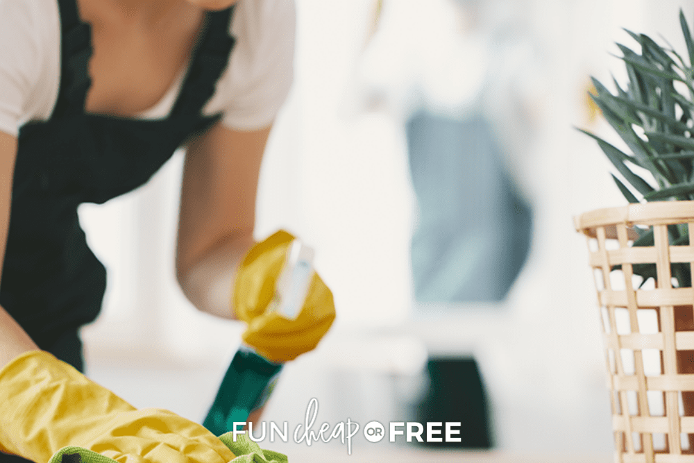 cleaning after vacation, from Fun Cheap or Free