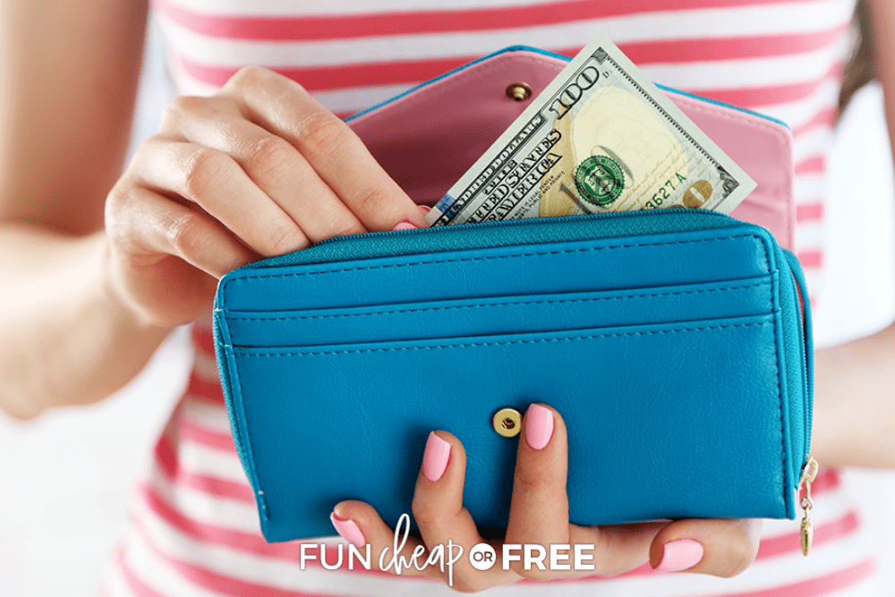 one hundred dollar bill in a wallet, from Fun Cheap or Free