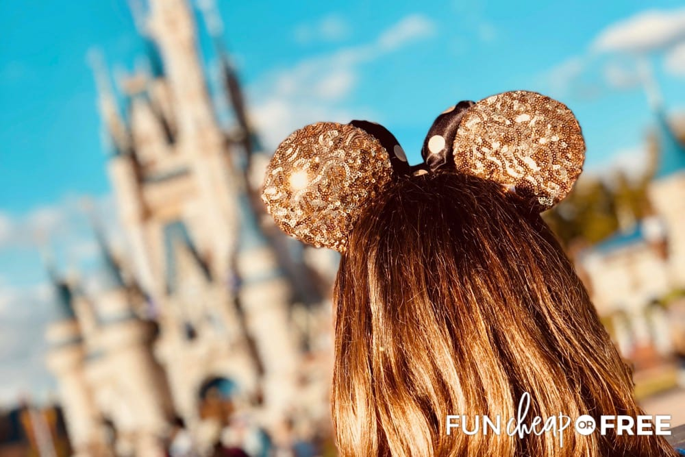 Ideas to Save Money On Disney Souvenirs from Fun Cheap or Free