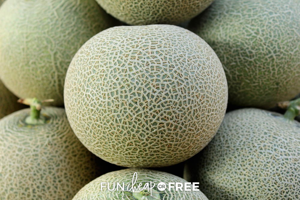 picking the perfect cantaloupe, from Fun Cheap or Free