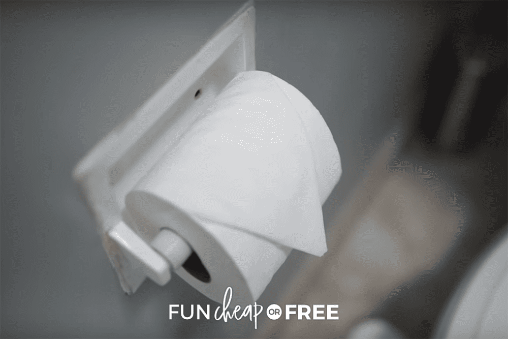 Fold Toilet Paper from Fun Cheap or Free
