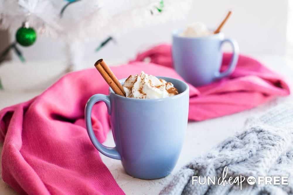 Use these tips from Fun Cheap or Free to store your leftover hot chocolate