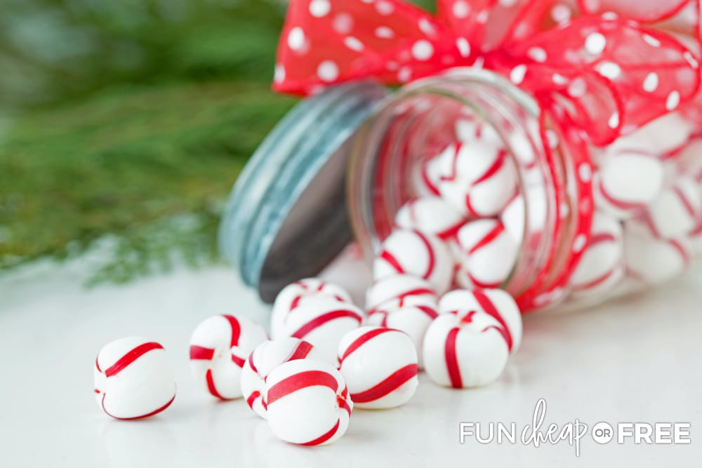 Peppermints are one of those cheap gift ideas that everybody loves - Tips from Fun Cheap or Free