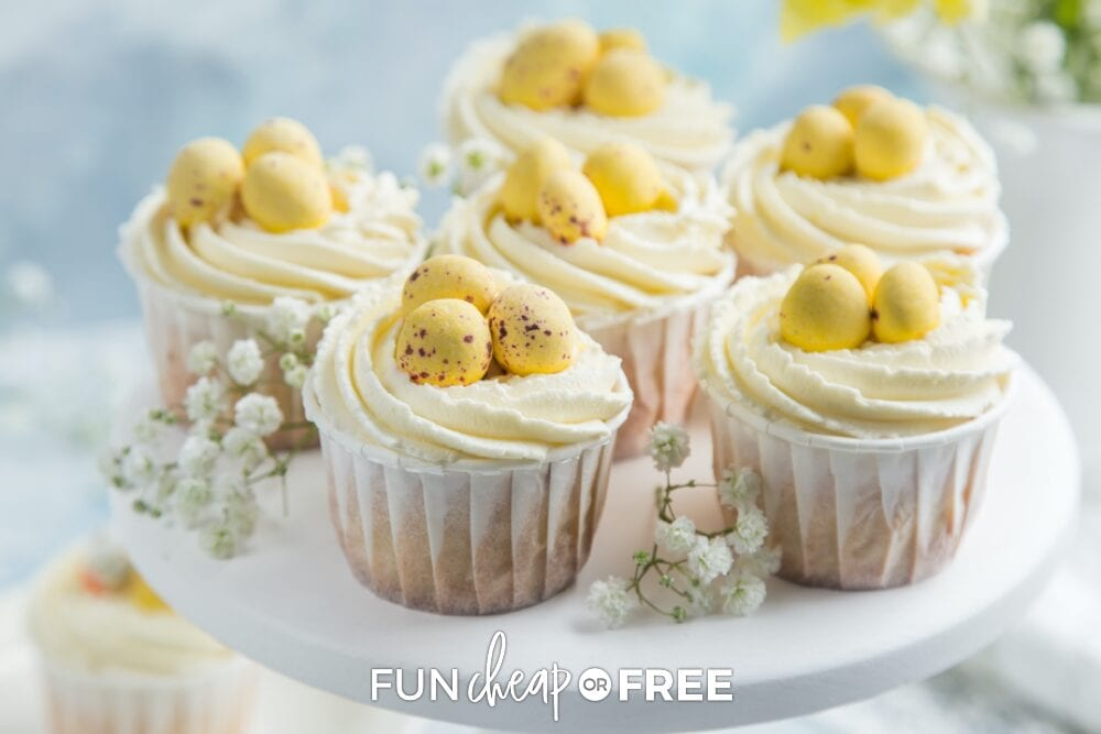 Nest cupcakes on a platter, from Fun Cheap or Free