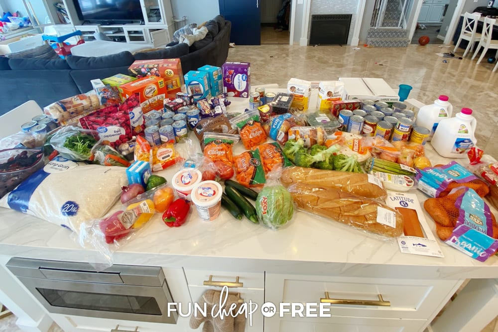 This week's grocery haul trip! Kitchen restock tips from Fun Cheap or Free.