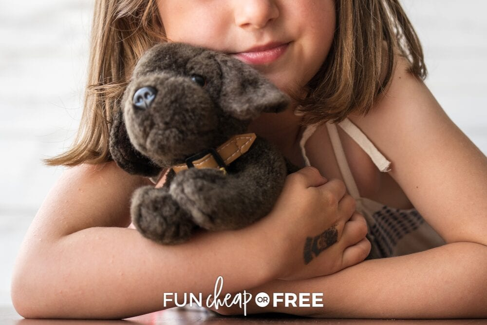 girl holding stuffed puppy, from Fun Cheap or Free