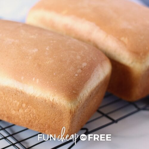 Freshly baked bread on a metal rack, from Fun Cheap or Free