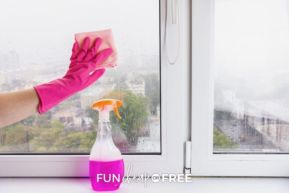 Woman cleaning glass window, from Fun Cheap or Free