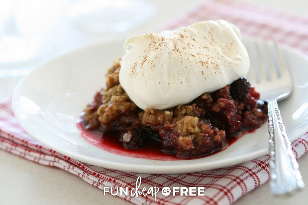 You're going to love these desserts in the Slow Cooker Recipes Ebook from Fun Cheap or Free