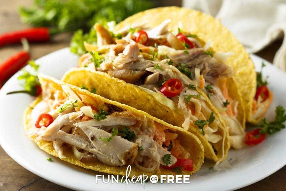 Chicken taco on a plate from Fun Cheap or Free