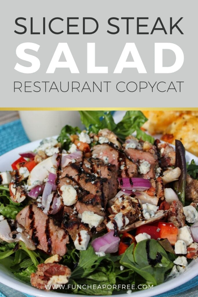 Sliced steak salad in a bowl from Fun Cheap or Free