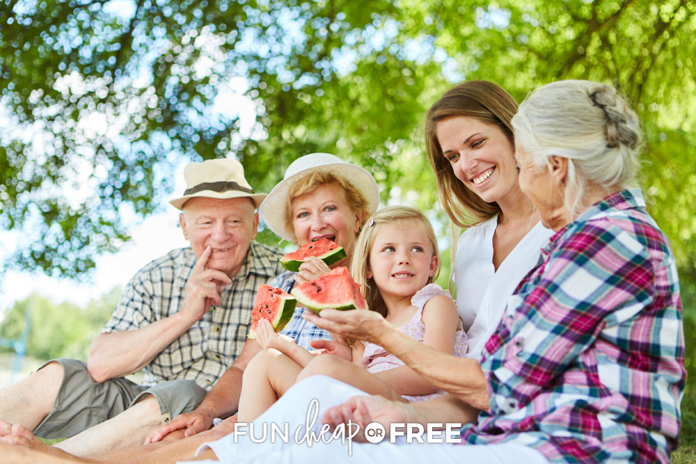 These BEST family reunion ideas are sure to be a hit for all ages. Find tips and ideas at Fun Cheap or Free!