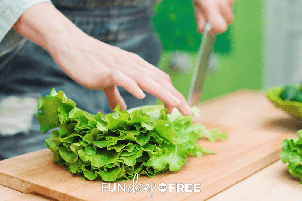 Learn how to make the BEST steak salad recipe EVER with Fun Cheap or Free!