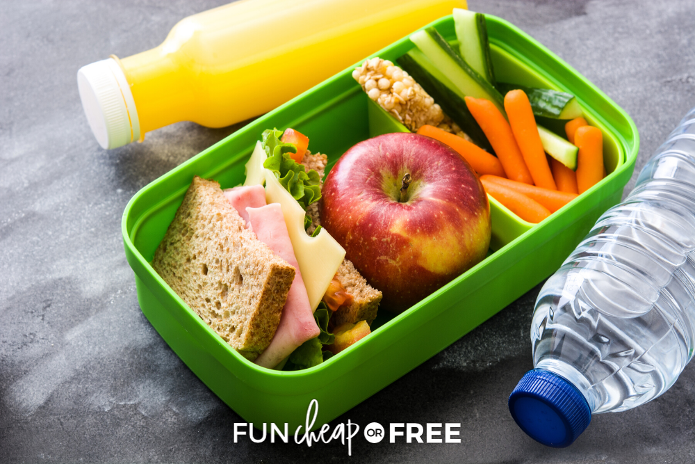 These EASY lunch ideas for home will get you out of that lunchtime rut! Get ideas from Fun Cheap or Free.