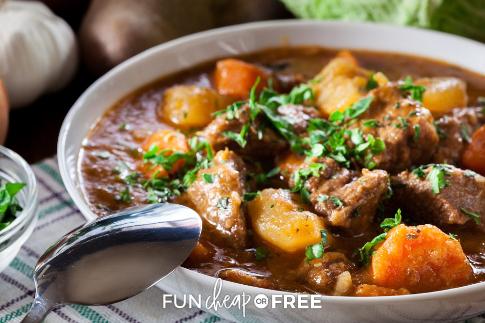 Pot roast in a bowl from Fun Cheap or Free!