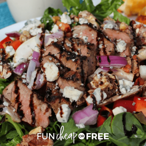 Sliced steak salad on a plate from Fun Cheap or Free
