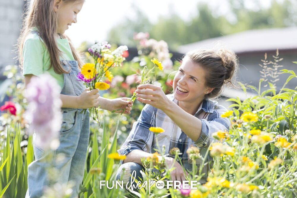 Your family will love these outdoor activities! Fun summer ideas from Fun Cheap or Free