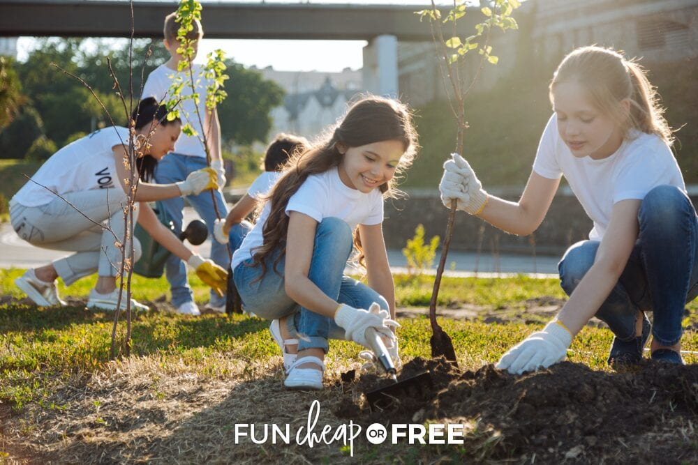 young family planting trees together, from Fun Cheap or Free