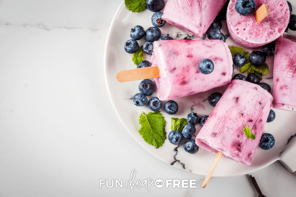 Make yogurt based homemade popsicles for a filling and nutritious snack from Fun Cheap or Free!