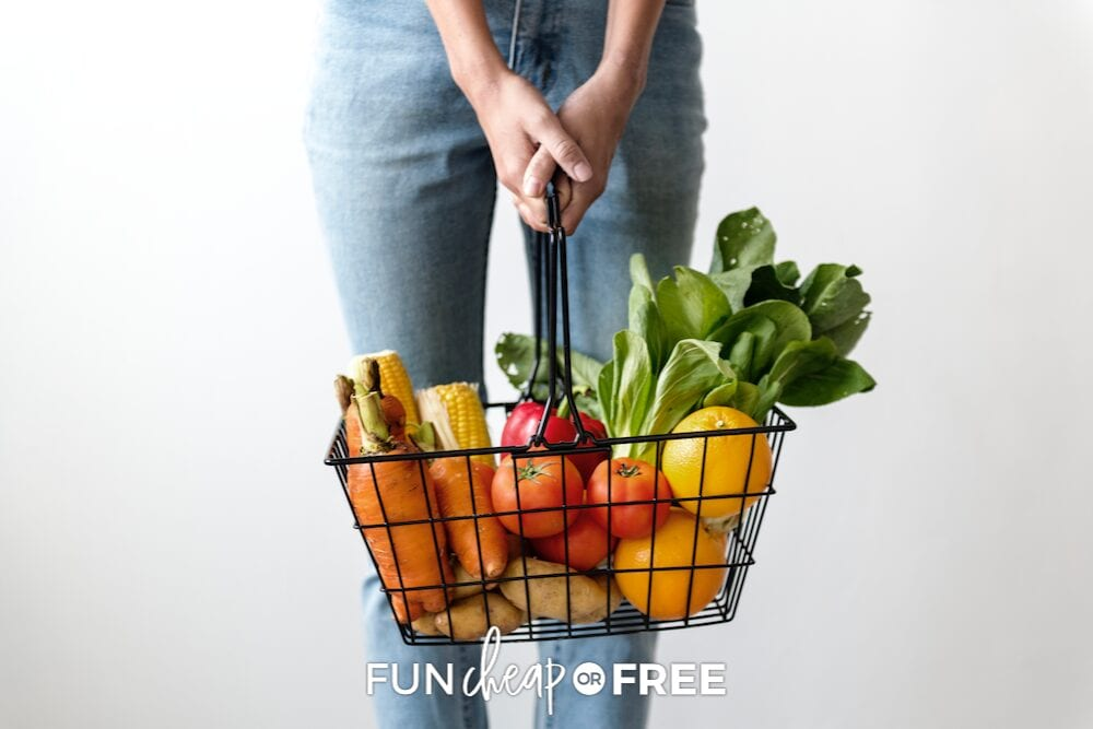 Woman holding grocery shopping basket, from Fun Cheap or Free