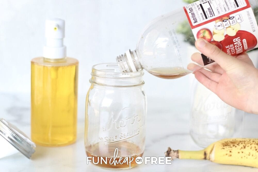 Make a fruit fly death combo and never worry about those pesky buggers again! Fun Cheap or Free