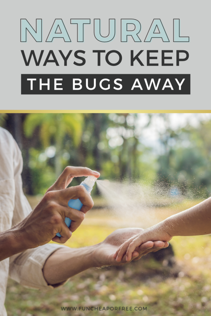 Natural ways to keep the bugs away from Fun Cheap or Free