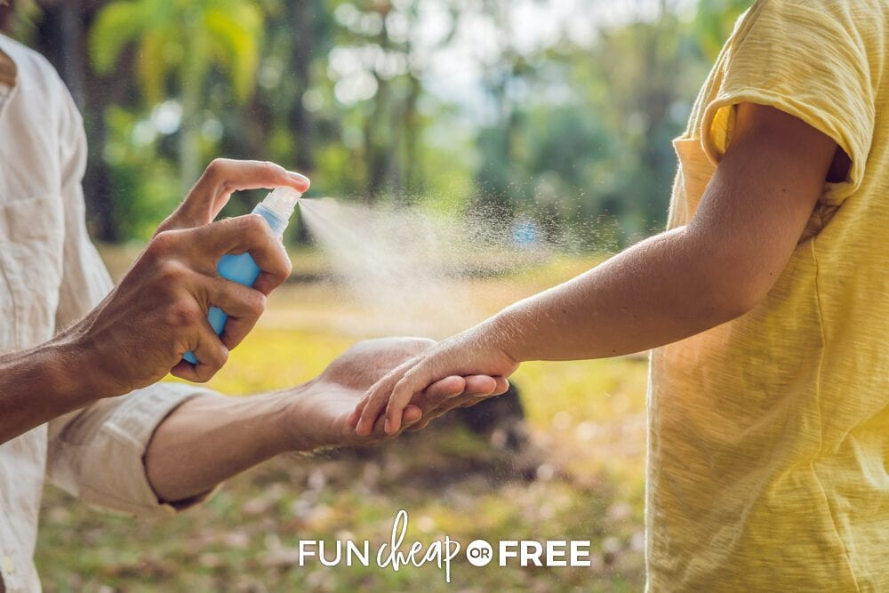 Stay away from those expensive chemicals! Choose a natural bug repellent from this list and watch it work its magic - Homemade bug spray from Fun Cheap or Free