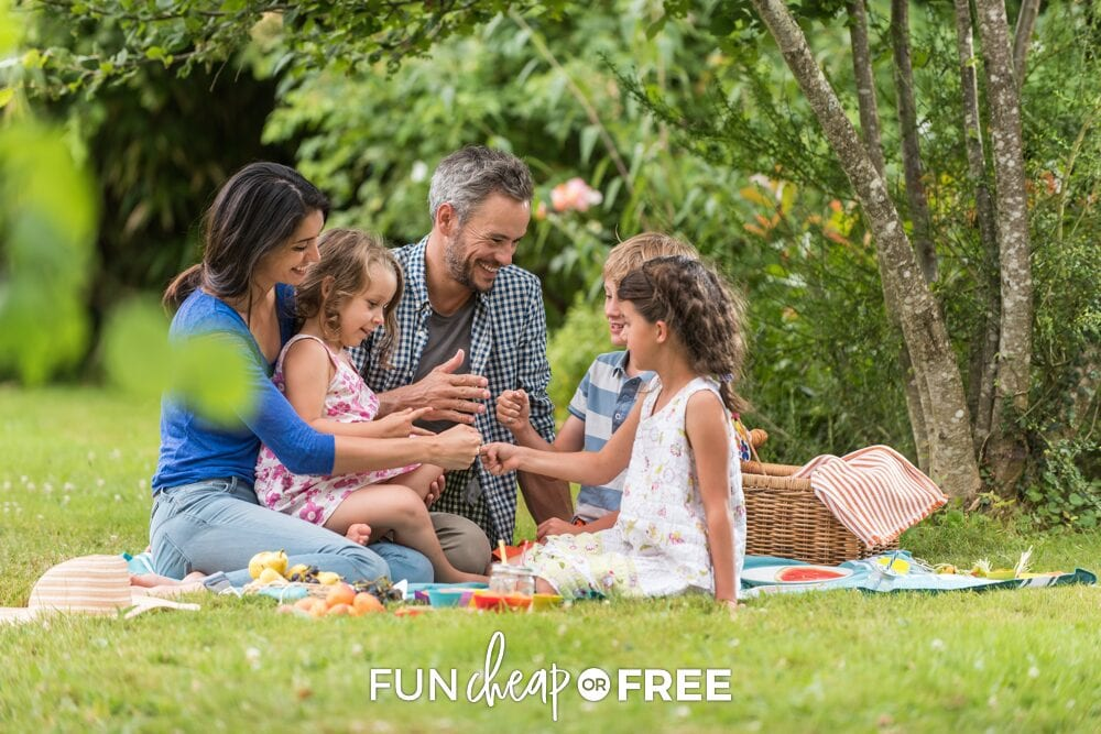 Cheap and easy picnic ideas from Fun Cheap or Free to get you outside and having fun!
