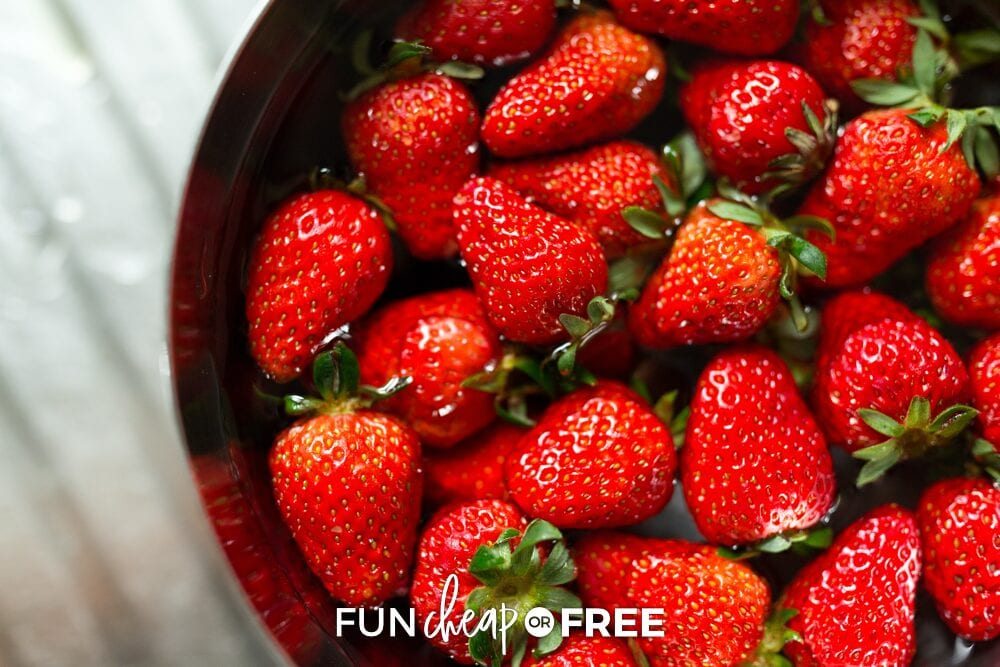 strawberries in a solution of vinegar, from Fun Cheap or Free