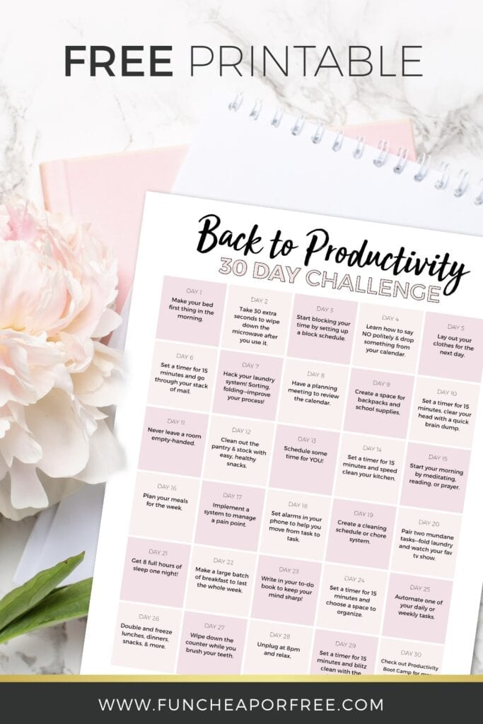 Back to Productivity 30 Day Challenge - From Fun Cheap or Free